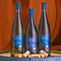 churchill-vineyards-wineries-in-nv