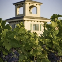 sanders-winery-wineries-in-nv