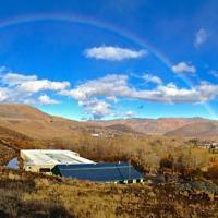 Maplewood-Stables-Reno-Nevada