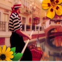 the-venetian-resort-hotel-nevada-casinos-nv