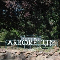 wilbur-d-may-gardens-and-arboretum-in-nv